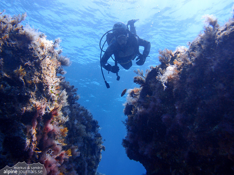 Even if there aren't many swim throughs on this particular dive, one can still find good shelter for fish and coral to examine.