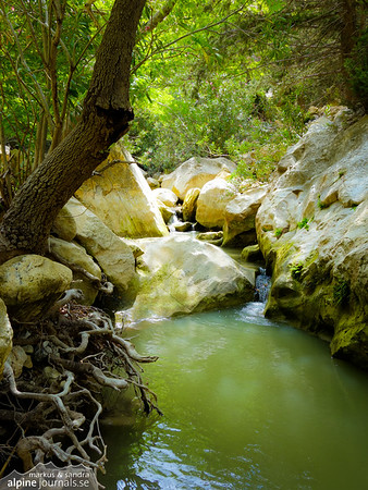 Stream in Avakas gorge, Cyprus