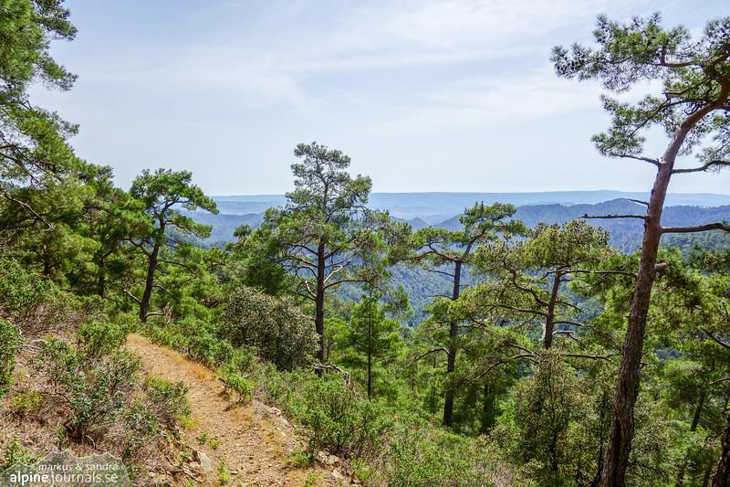 Chorteri trail.
