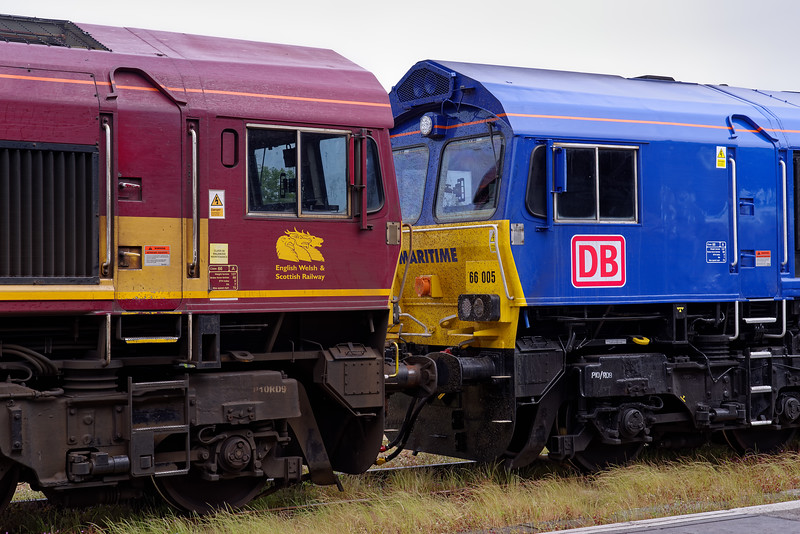 66102 and 66005 on Didcot Loco Holding sidings on 1st June 2019.