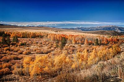 Eastern Sierras Select:Eastern Sierras Select:Eastern Sierras Select:Eastern Sierras Select:Eastern Sierras 395 hwy Fall season2