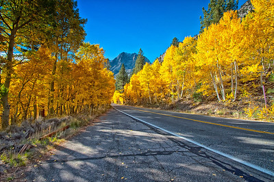 Fall Road To Silver Lake
