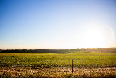 Sandsprings/Elendale area - farmland