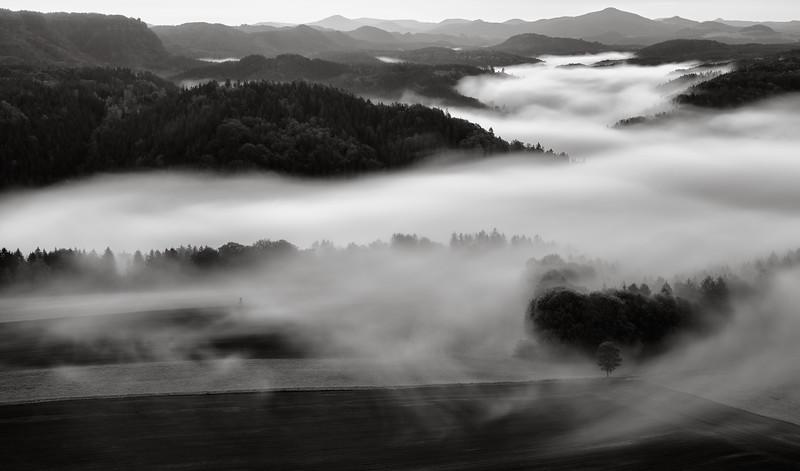 Rolling Fog in Bohemian Switzerland