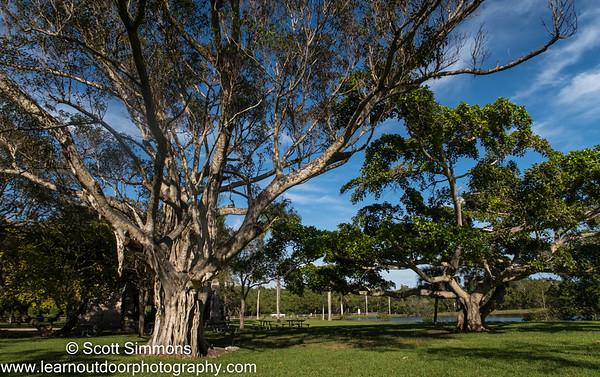 Matheson Hammock Park