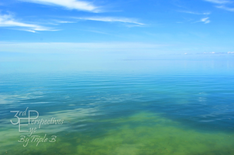 Seamless Blue - Key Largo, FL