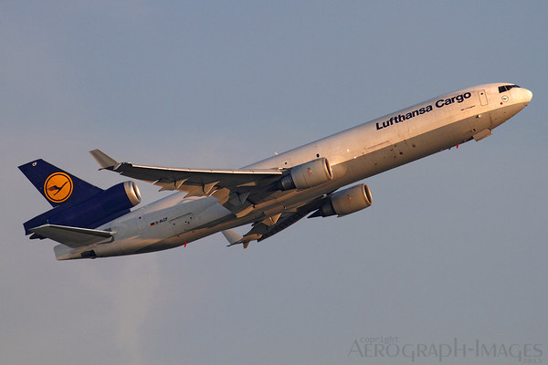Reg: D-ALCF Operator:  Lufthansa Cargo Type:  McDonnell Douglas MD-11F		   C/n: 48798 / 637 Location:  Frankfurt-am-Main (FRA / EDDF) - Germany        Photo Date: 30 August 2013 Photo ID: 1300799