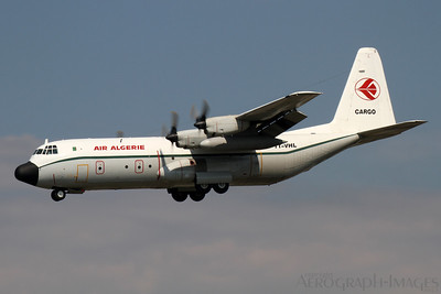 Reg:  7T-VHLOperator:  Air Algerie CargoType:  Lockheed L-100-30 Hercules  C/n:  382-4886Location:  Framkfurt-am-Main (FRA / EDDF), GermanyScheduled cargo service from Algiers on short finals to runway 25L at Frankfurt Photo Date:  30 August 2013 Photo ID:  1300864