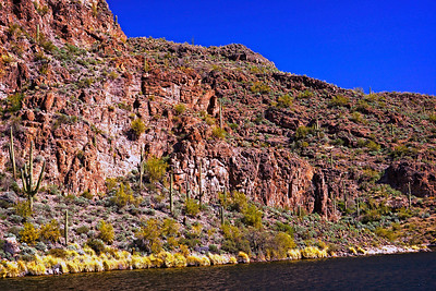 Canyon Lake Az4