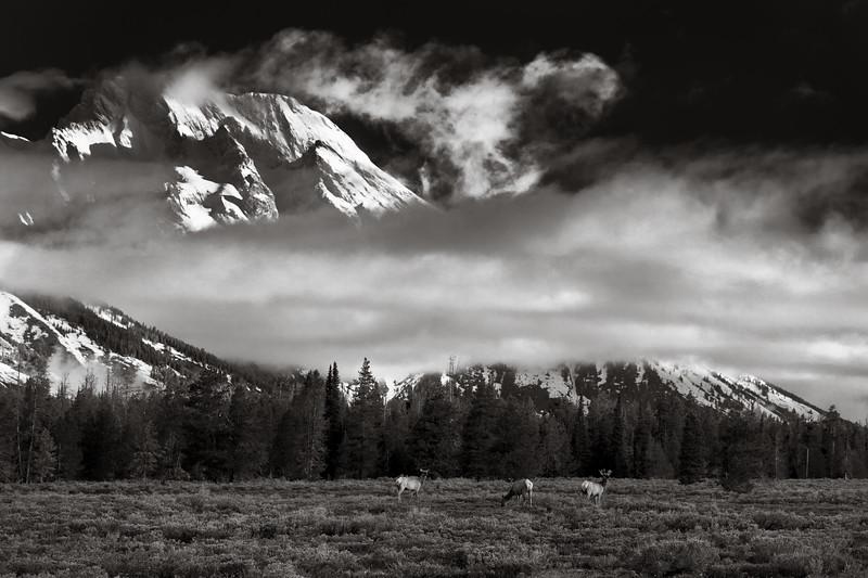 Under the Teton