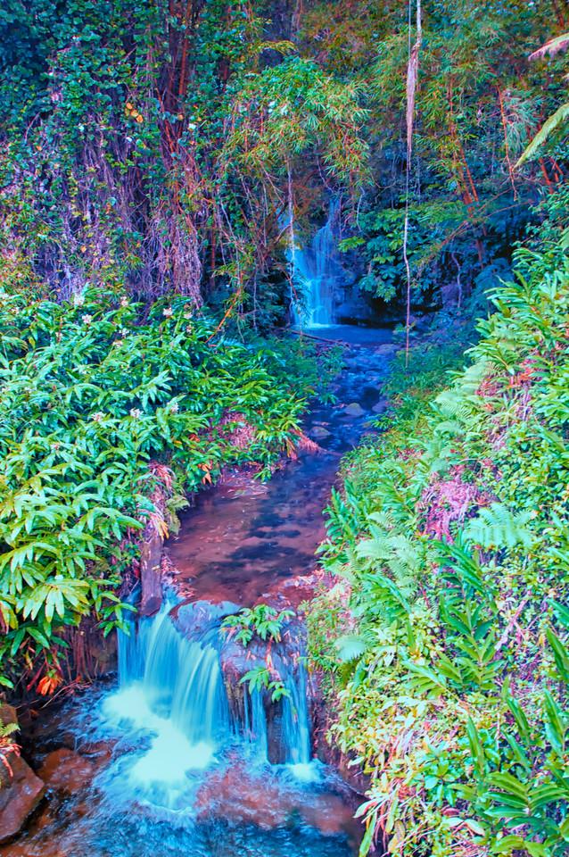 Lower Akaka Falls1