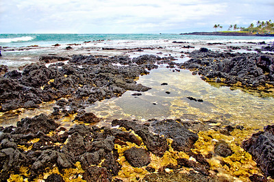 Lava and coral near the Hilton Waikoloa Village property