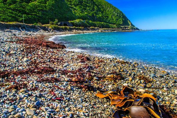 Beach North of Kaikoura