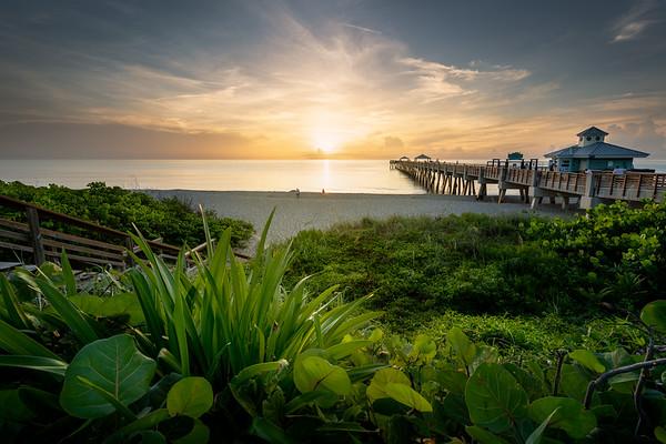 Morning Light at the Juno Beach Pier