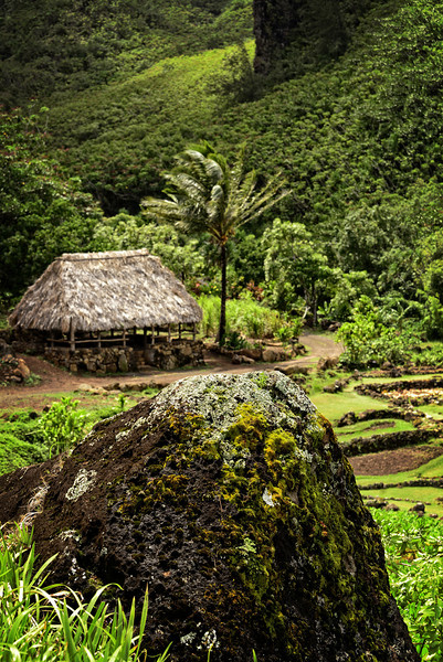 Depicted small communal lodging Kauai Napili Coast