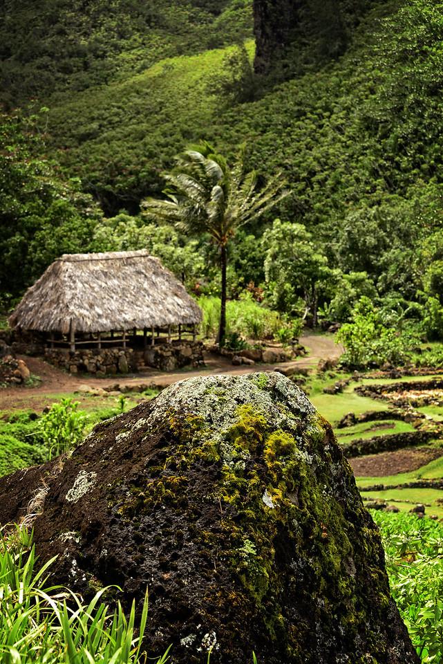 Depicted small communal lodging Kauai Napili Coast