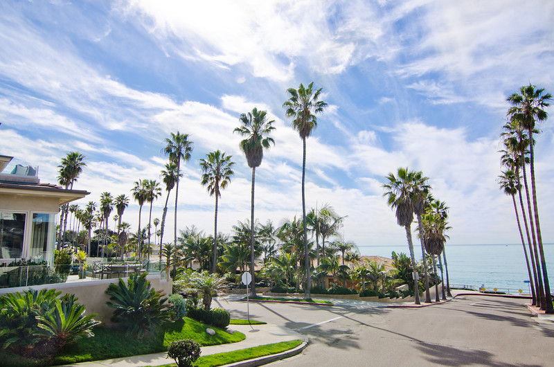 Camino De La Costa La Jolla ~ Windansea Beach