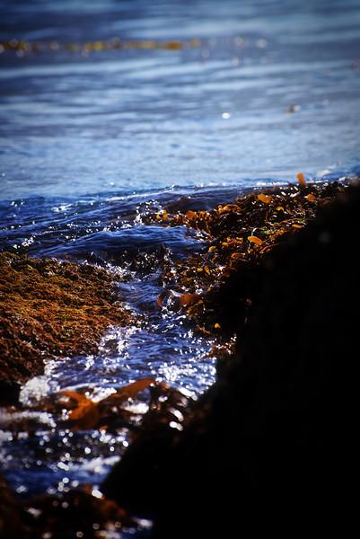 Tidal Ebb-Flow