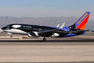 "N715SW - Southwest Airlines, Boeing 737-7H4W (c/n 27849 l/n 62)  The flying killer whale! Southwest's ""Shamu"" logojet settles onto 25L at Las Vegas. 20 January 2008"