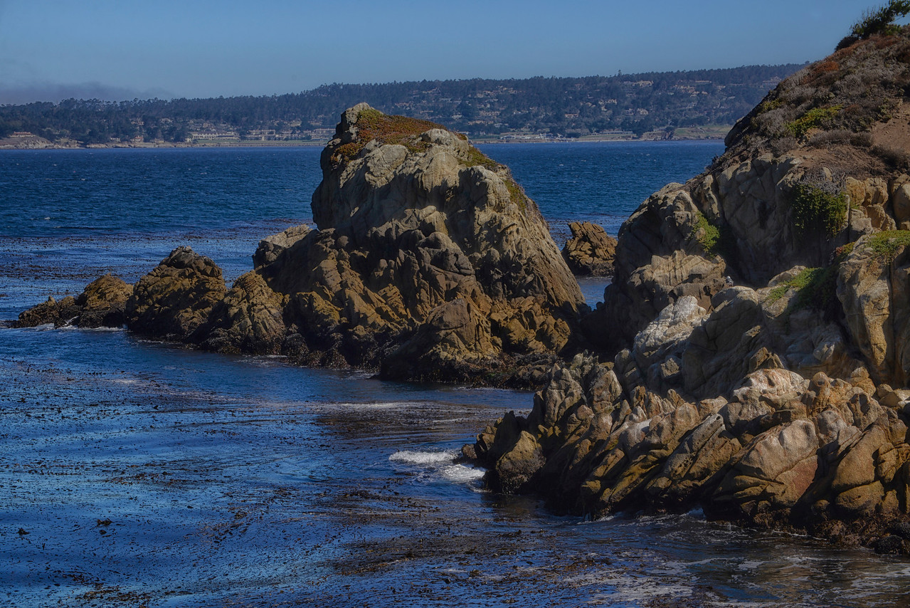 Carmel Point Lobos3