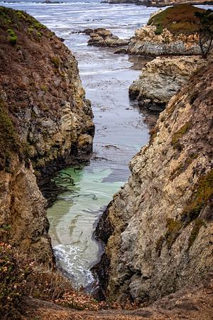 Monterey Point Lobos 1