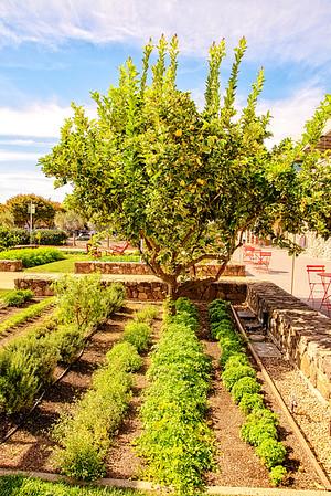 Culinary Institute America Napa Copia Garden