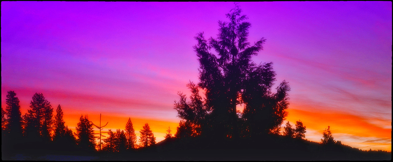 Yosemite's Purple sunset