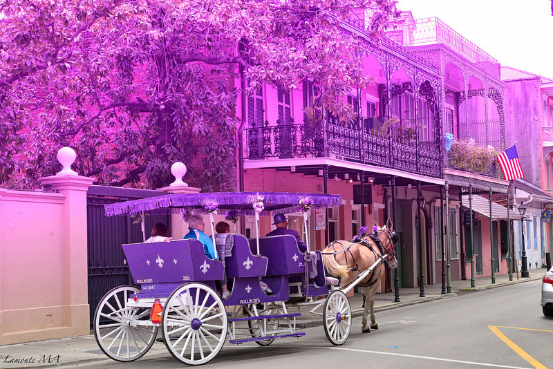 New  Orleans through Purple colored glasses.