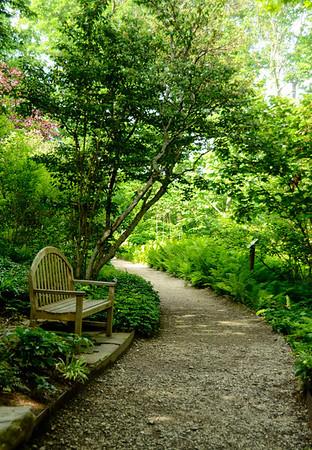 #043-Plants of Promise Garden