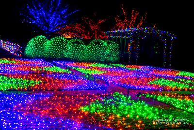 The Quilt Garden - Winter Lights 2014