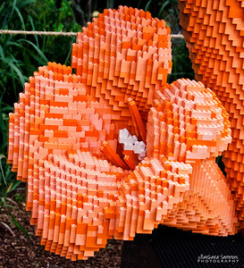 """Hummingbird"" 31,565 LEGO pieces; 64""x32.35""x77""  ""Some Assembly Required"" LEGO Brick Sculpture of artist Sean Kenney October 19, 2013 through January 5, 2014"