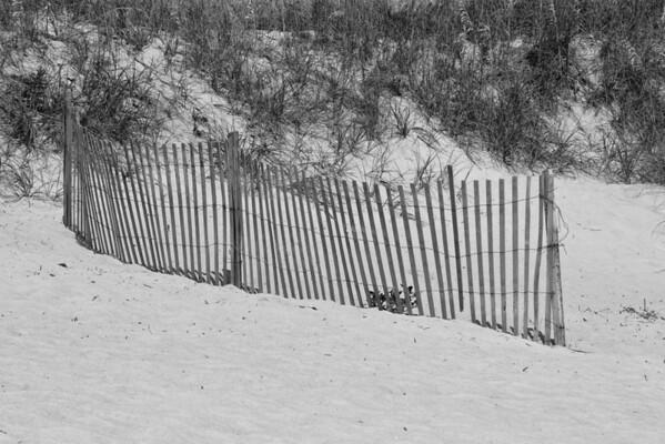 Beach Fence-2