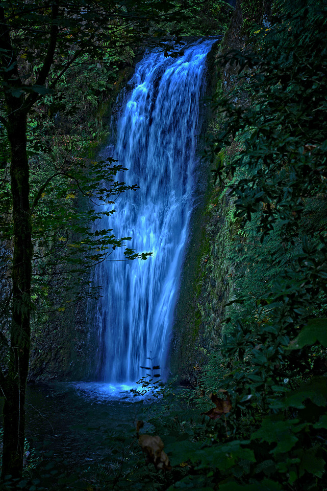 Waterfall Wonder