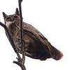 GrtHornOwl Pantanal_7I2B8628_10-09-23