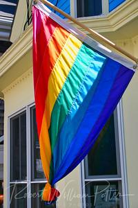 2691-Rainbow flag