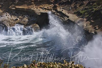 7294-Ocean Waves