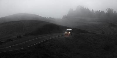 Panoramic Fog
