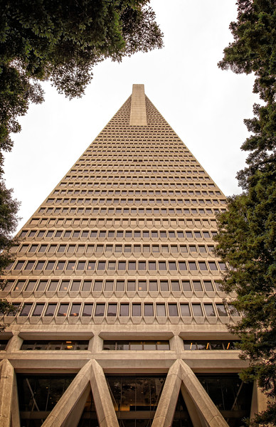 The San Francisco Pyramid Building