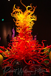 0233-Chihuly glass exhibit