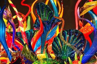 0248-Chihuly glass exhibit