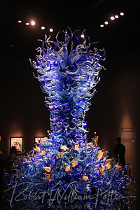 0221-Chihuly glass exhibt