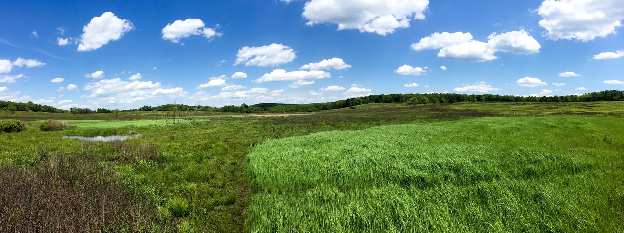 Big Meadows Pano