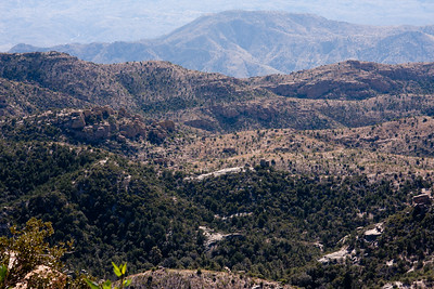 Scenery Tucson_10-10-24_IMG_2472
