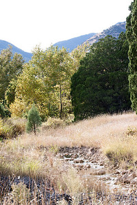 Scenery Tucson_10-10-25_IMG_2642
