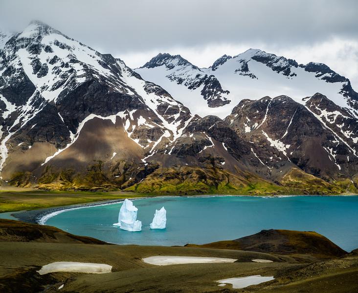 Icebergs in Fortuna Bay