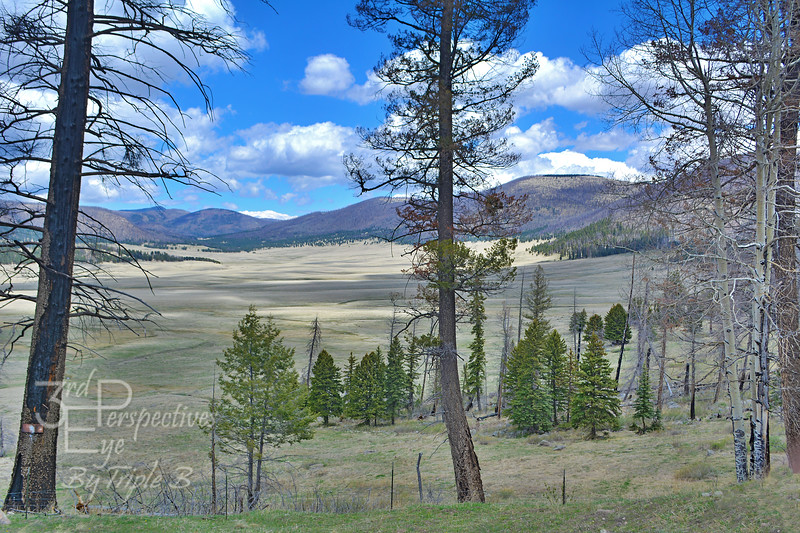 Valles Caldera National Preserve - New Mexico - USA