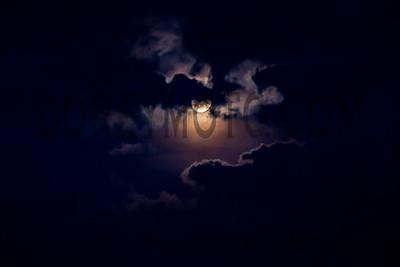 IMG_1402-Edit