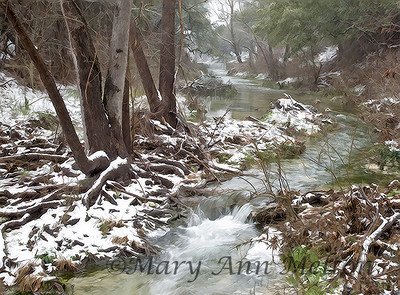 Rare snow in Central Texas creates  winter scenes. Hutto, Texas 2010