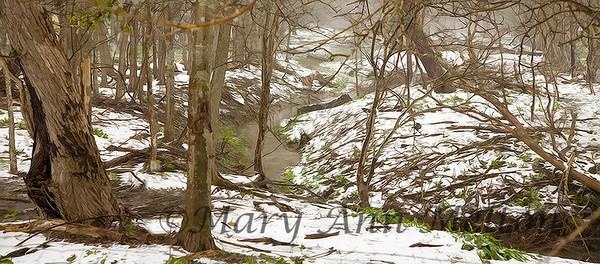 Rare snow in Central Texas creates  winter scenes. Hutto, Texas 2010