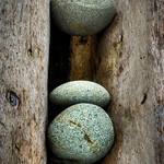 Drift Wood and Three Stones